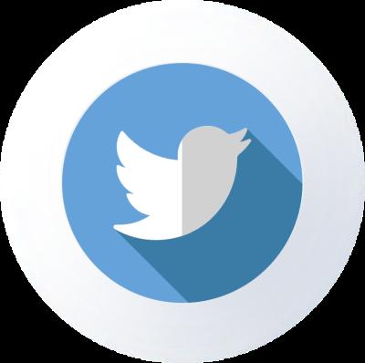 Logo Twitter ® Pierre-Emmanuel LAMBERT®